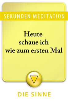 Big_5-sehen-osho-text